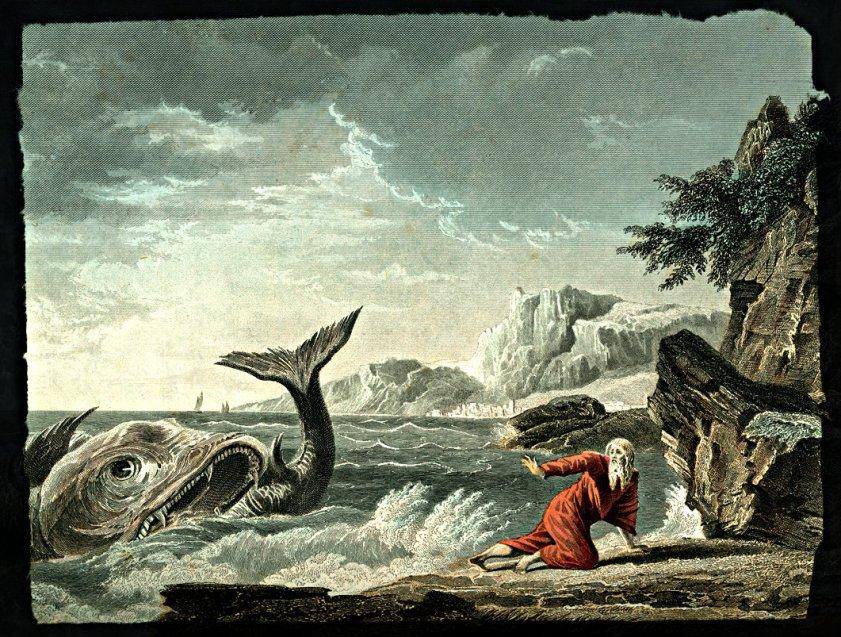 Jonahspitout